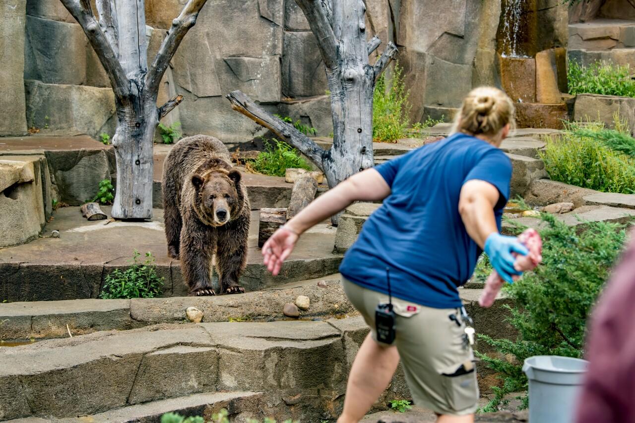 Zoo a la Carte