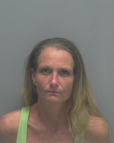 Mugshots: Lee County prostitution sting in October 2017