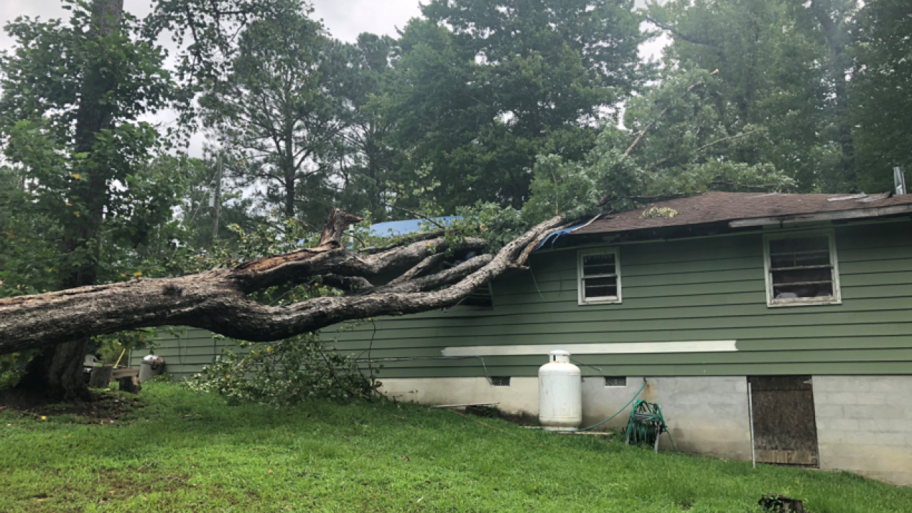 Surry County family narrowly escapes as tree falls on house duringstorm