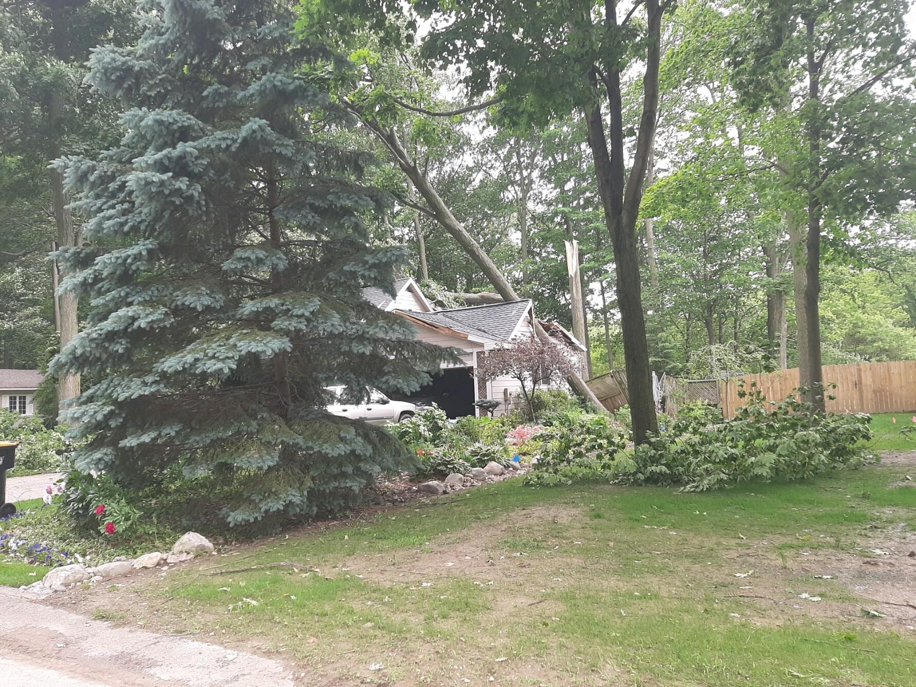 Gerogetown township storm damagen 7.jpg