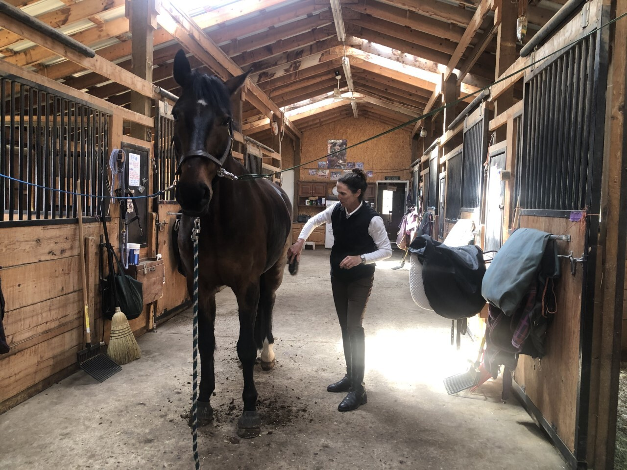 Nicole Ackerman grooms a horse at Inside Track Training