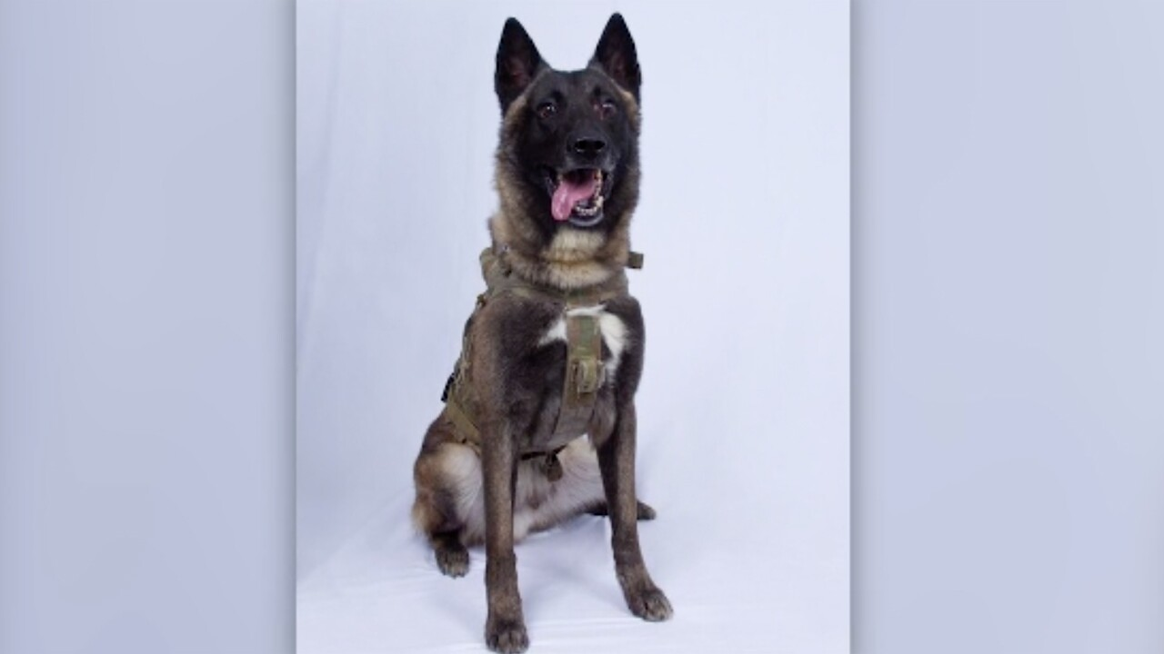 President Donald Trump tweeted that the military working dog named Conan, who was injured in the raid last weekend that killed the Islamic State leader, will leave the Middle East for the White House sometime next week.