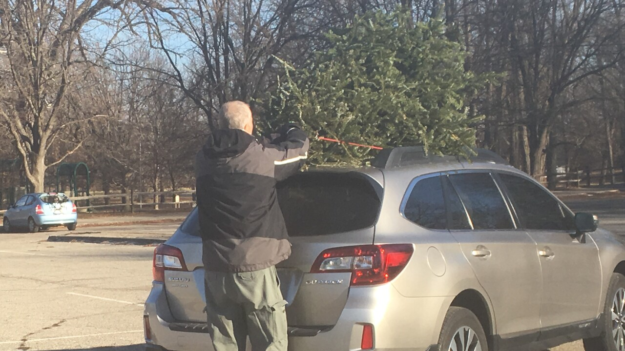 Christmas Tree Dropoff2.JPG