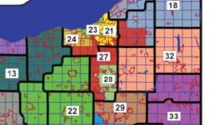 New state senate districts