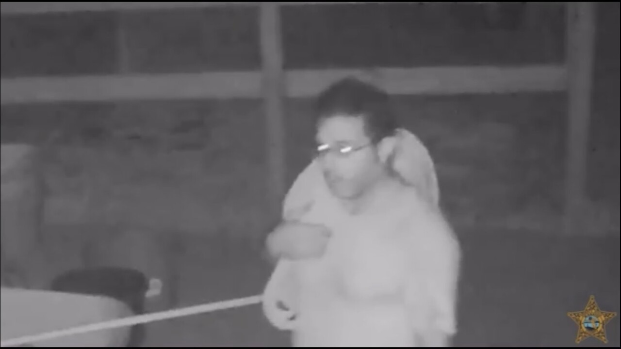 Person of interest in Manatee County horse slaughter.