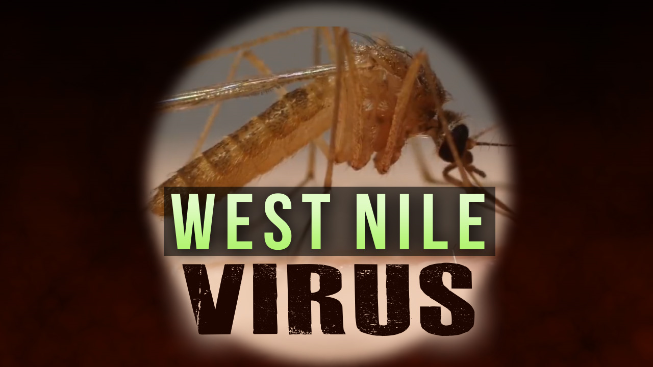 Utahn dies due to West Nile Virus