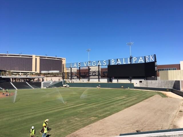 final grass LV ballpark.jpeg