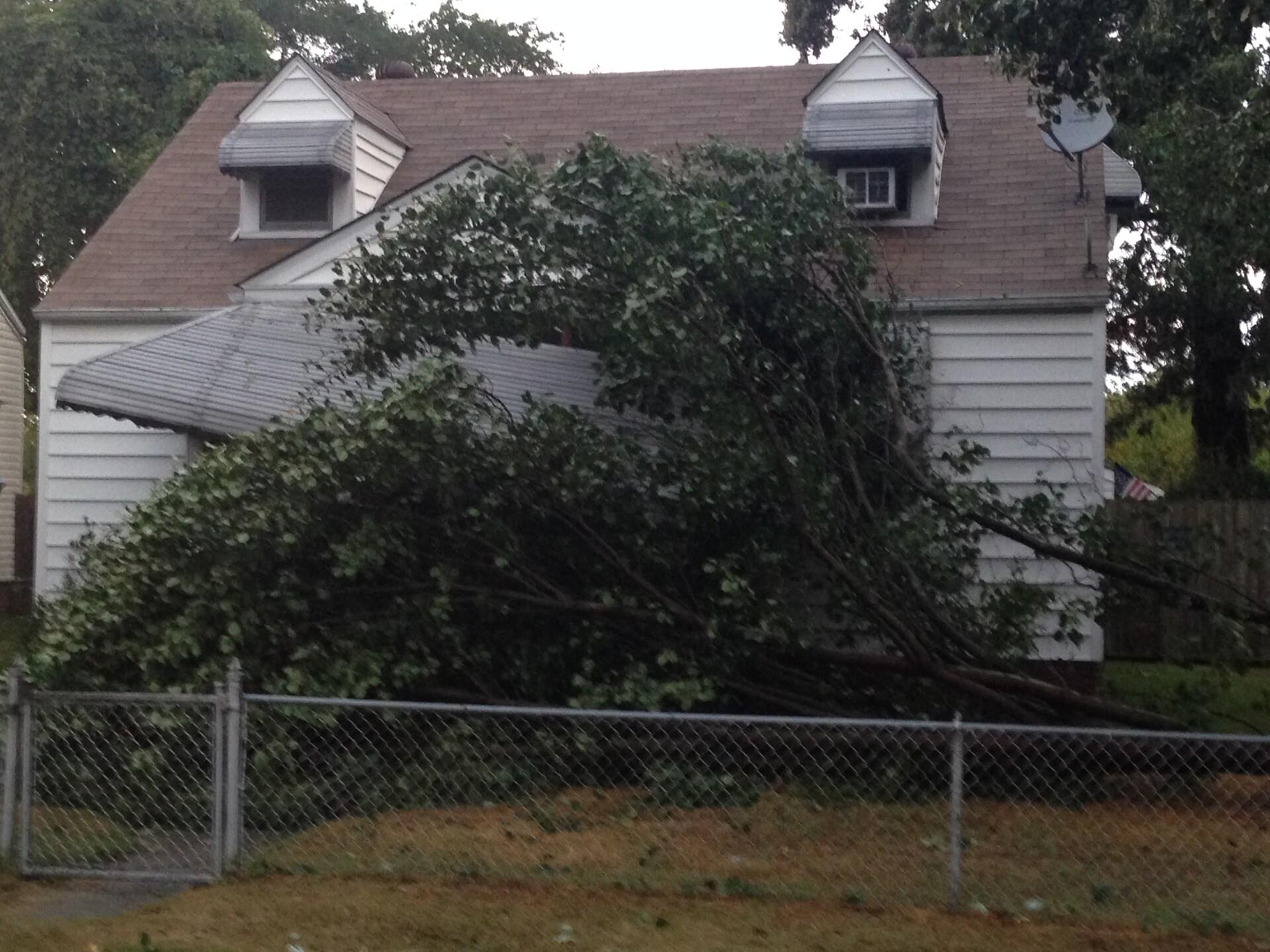 Photos: Storms bring down trees; lightning hits Norfolkapartment