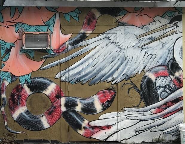 PHOTOS: St. Pete Art Mural Tour