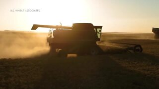 Montana Ag Network: film highlights reliability of U.S. wheat exports
