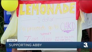 Lemonade stand raises money for CHKD.jpg