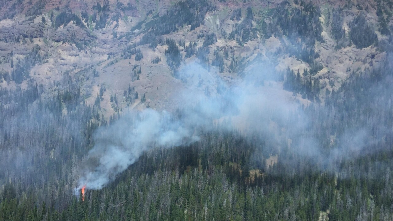 Wildfire spotted in Yellowstone National Park near eastern boundary