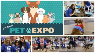 20th Annual Pet Expo