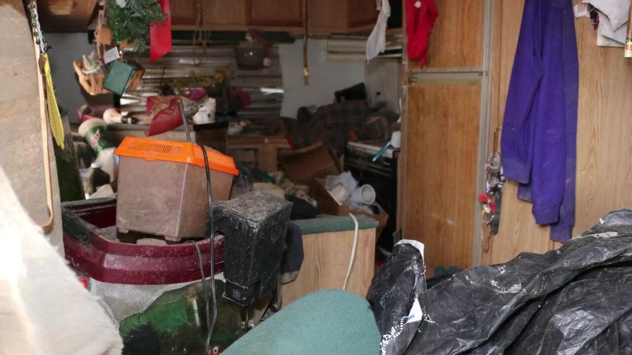 Photos show the living conditions of animals that were seized from Polejewski