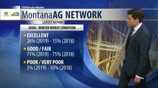 Montana Ag Network Weather: April 16th