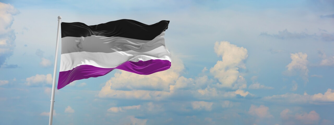 Flag,Of,Asexuality,Pride,Waving,In,The,Wind,On,Flagpole