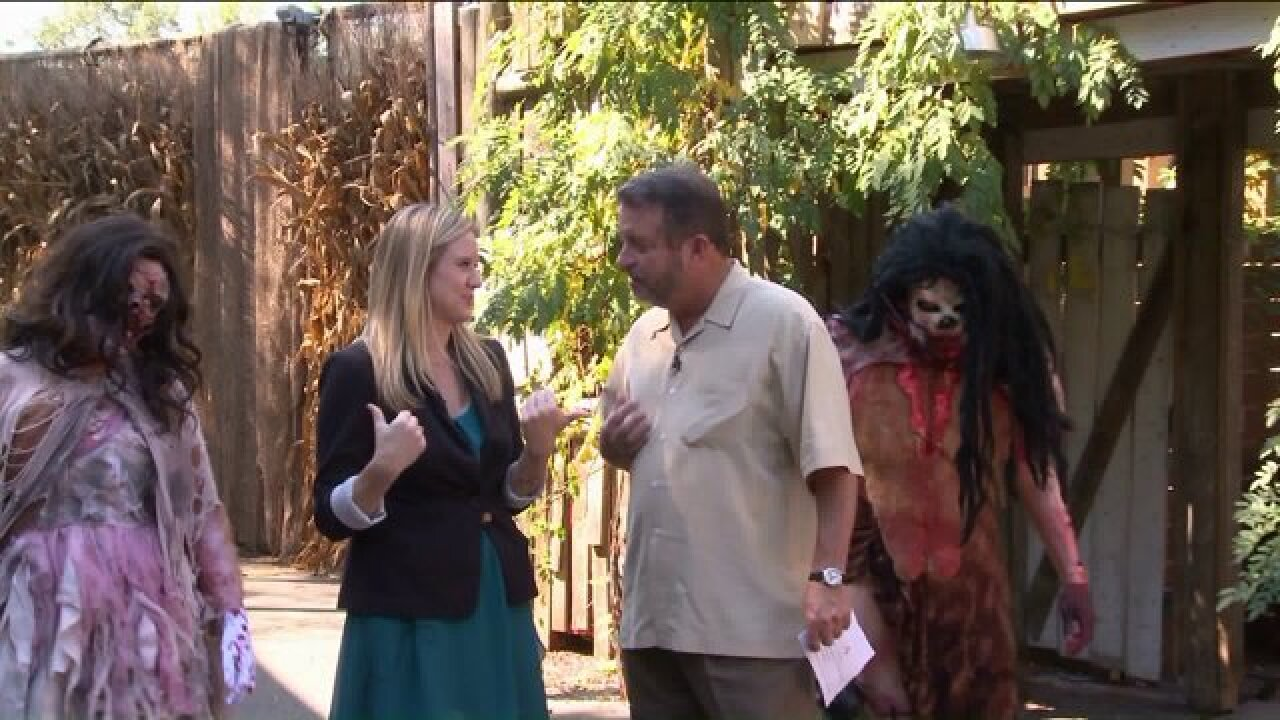 Enjoy the creepy side of Kings Dominion during Halloween Haunt
