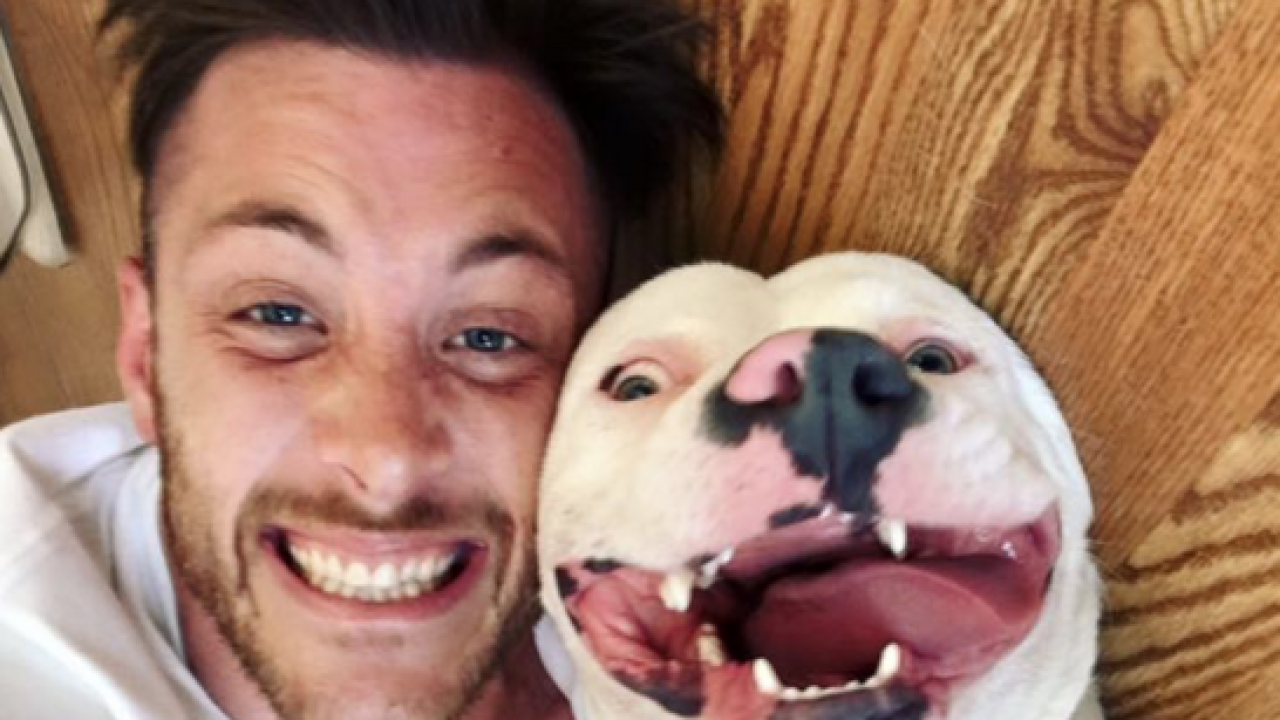 MI dog adoption post makes internet smile