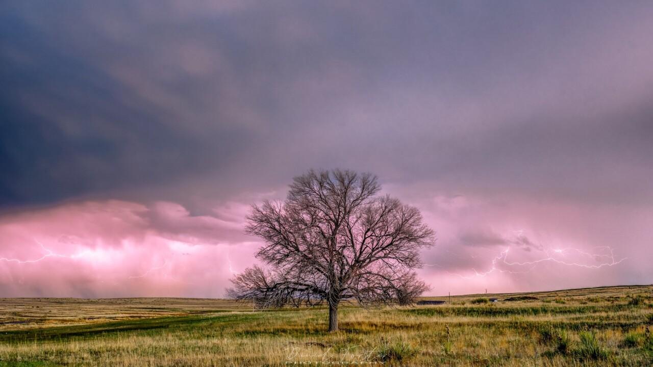 Daniel Forster thunderstorm