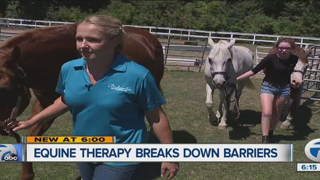 Social worker uses equine therapy to help others