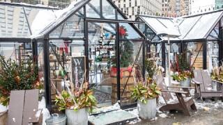 Decked Out Detroit Winter Markets