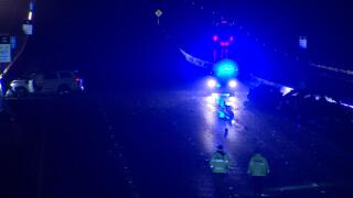 Williamson Co I-65 Fatal Hit and Run 4.jpg