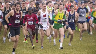 men's NCAA Division I Cross-Country Championships