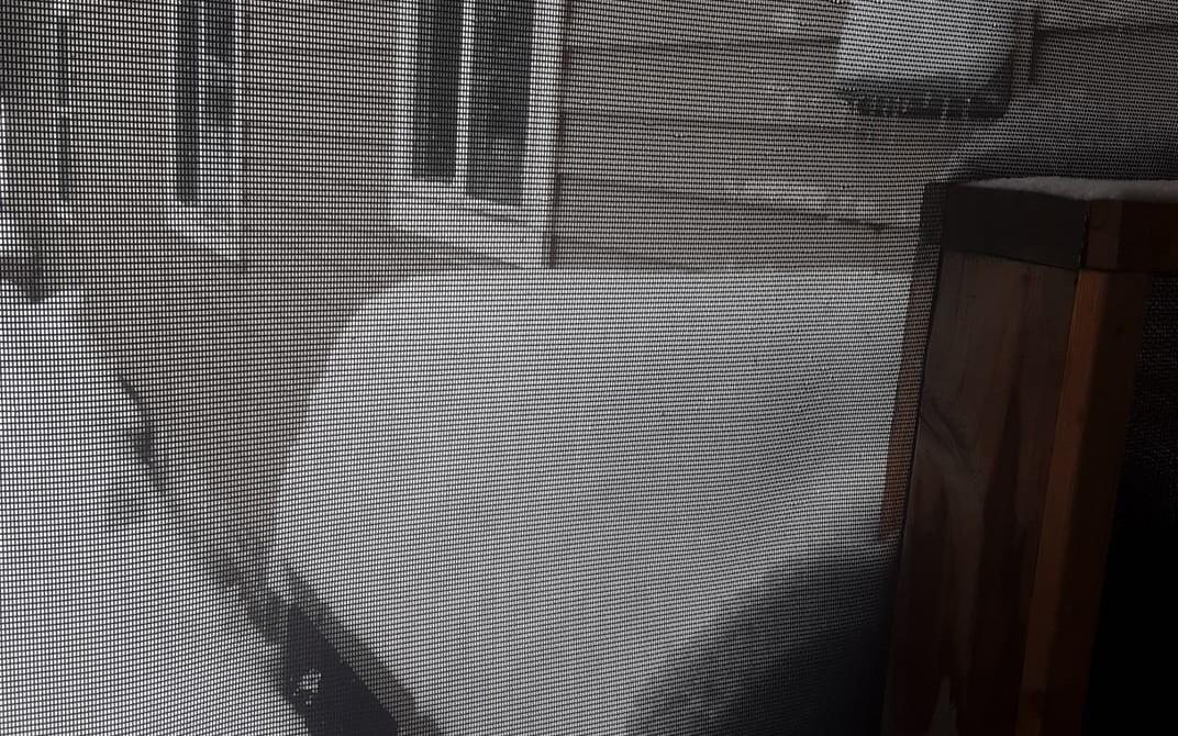 Snow Oct 24 Darby.jpg