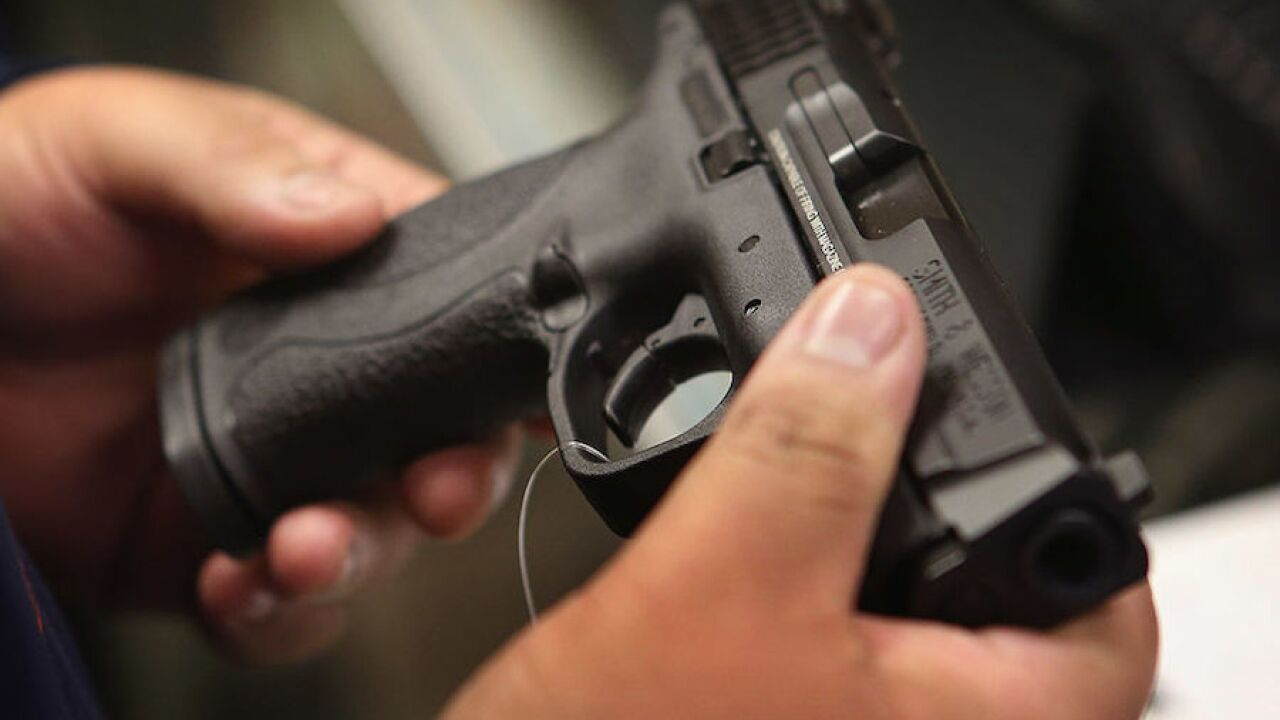 Gun generic