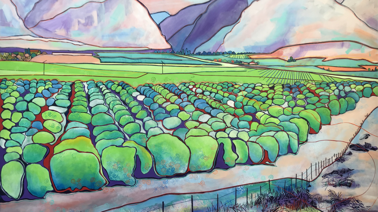 Sherwyn_Orchards Leading to the Canyon Entrance 48x60.png