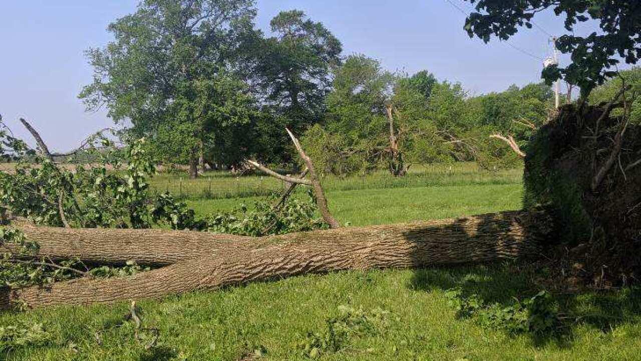 Henry County Tornado 3.JPG