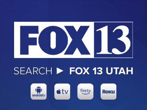 fox13webad.jpg