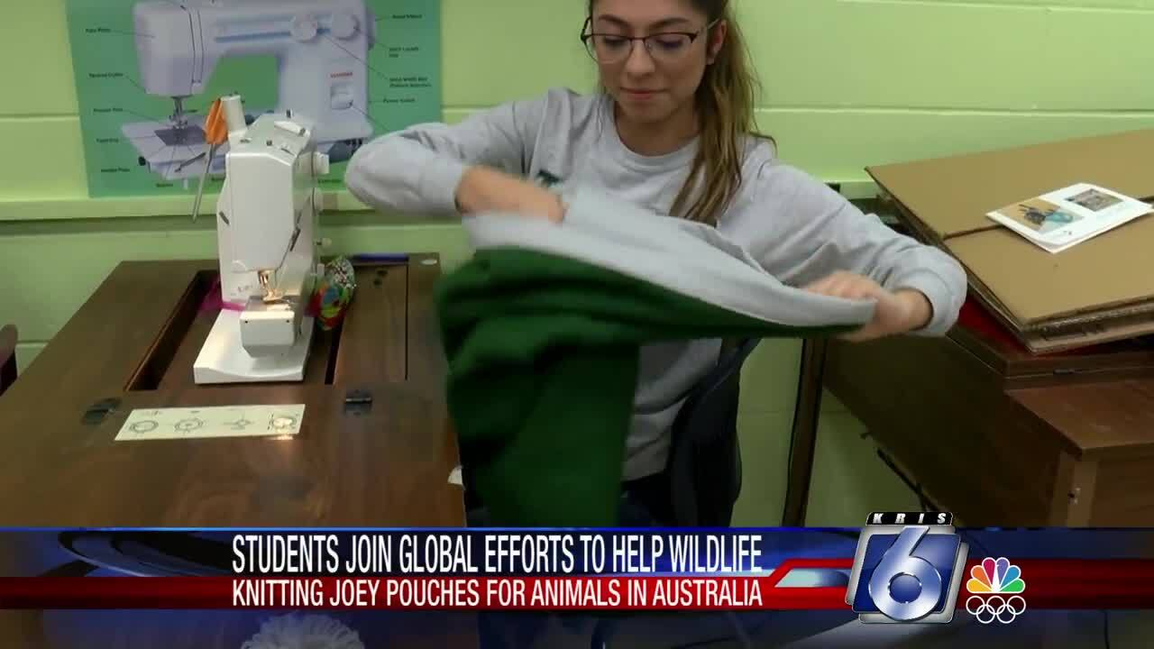 """King High School students are sewing """"special pouches""""  for animal wildlife recovery in Australia."""