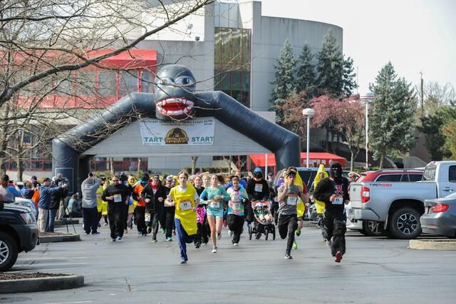 Cincinnati Gorilla Run 2017