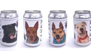 motorworks-brewery-dogs-on-beer-cans.jpg
