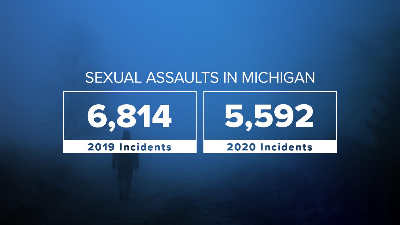 sex assaults in mi 2020