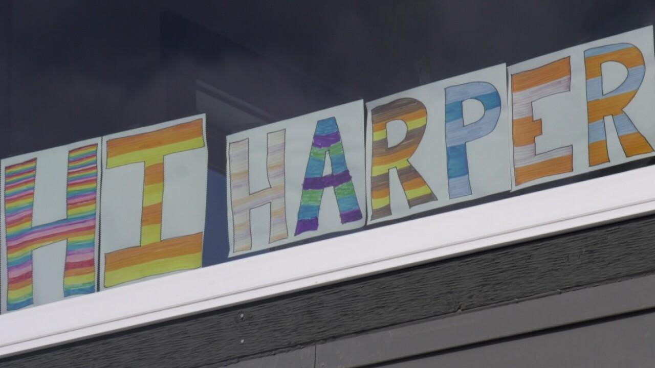 Hi Harper 1.jpg