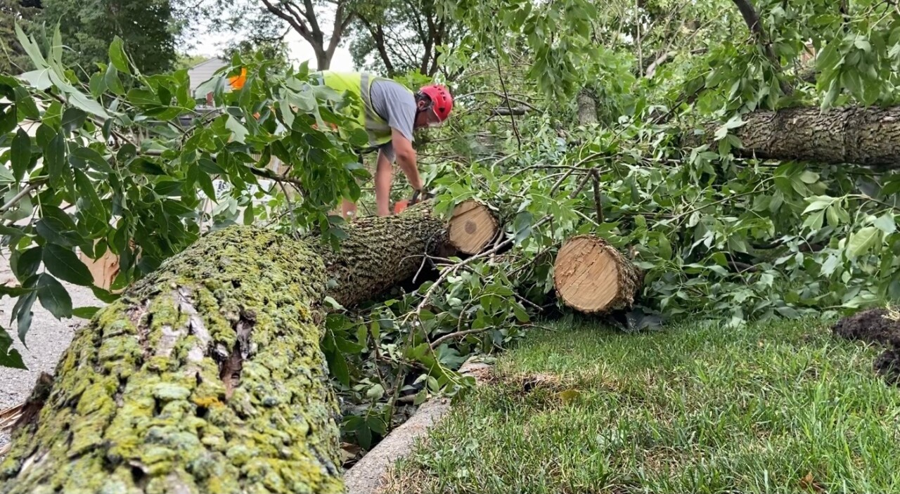 Whitefish Bay DPW continues storm clean up