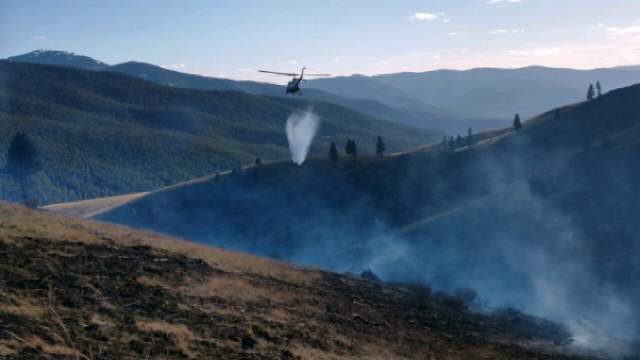 Plains Wildfire.jpg
