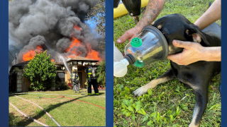 north-port-house-fire-dog-rescued.png