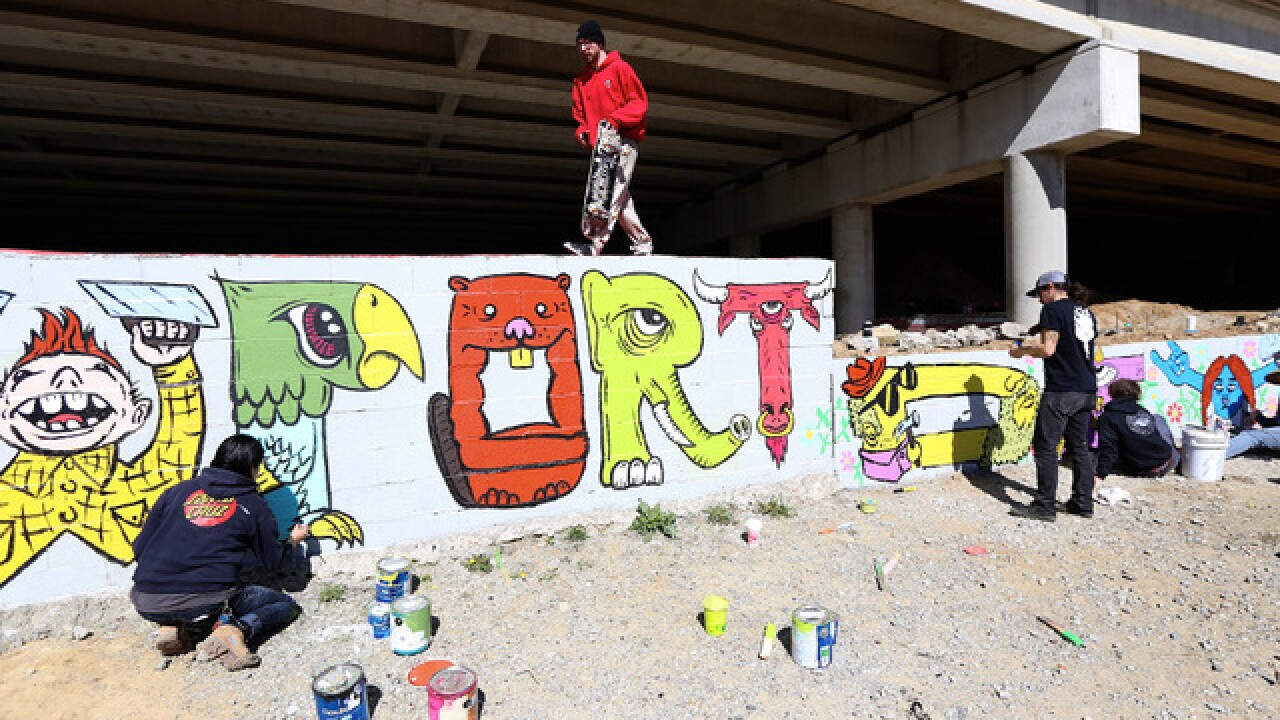 Skateboarders rally to create colorful mural