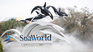 seaworld-orlando-front-entrance.png