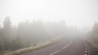 WX Fog Road.png