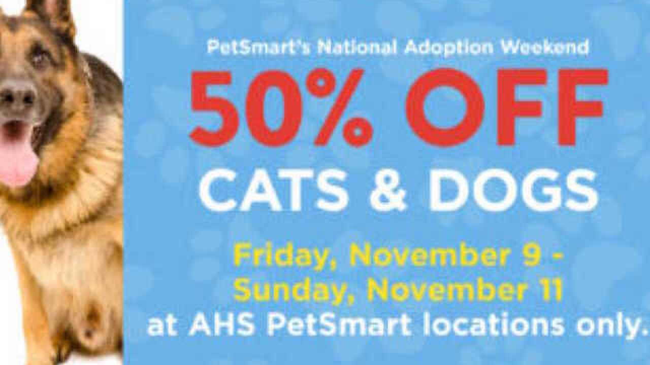 National Adoption Weekend Cats Dogs 50 Percent Off At Petsmart