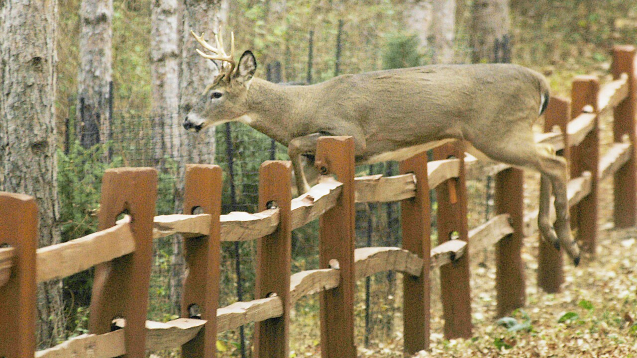 Man says he fatally shot another hunter after mistaking him for deer