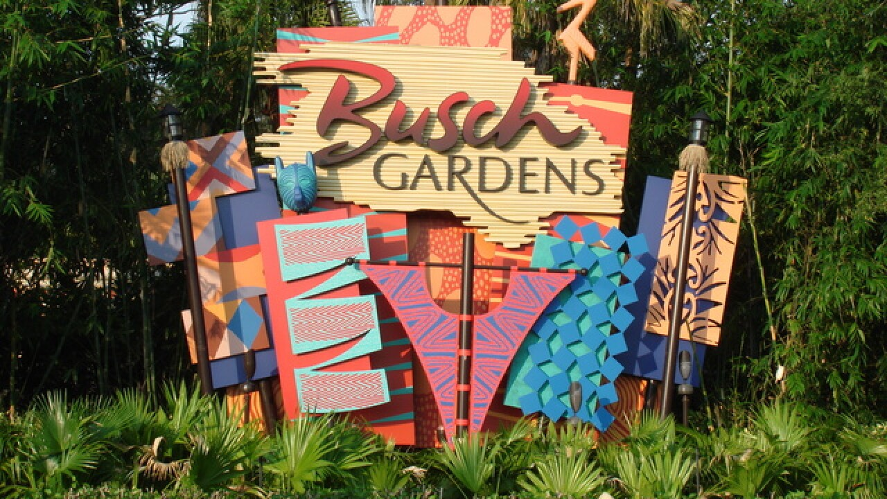 Busch Gardens offering free admission to Florida's first responders