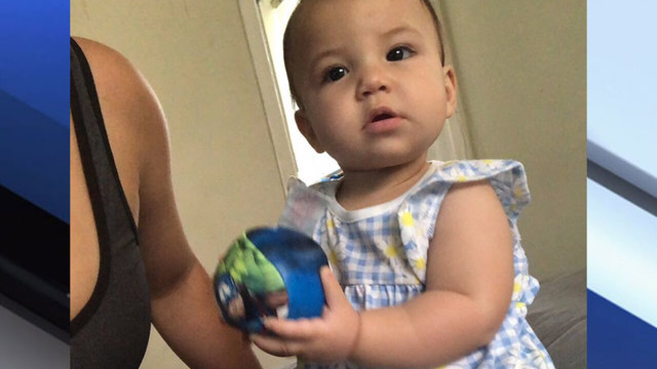 8-month-old Florida girl in bouncy chair attacked and killed by the family's dog
