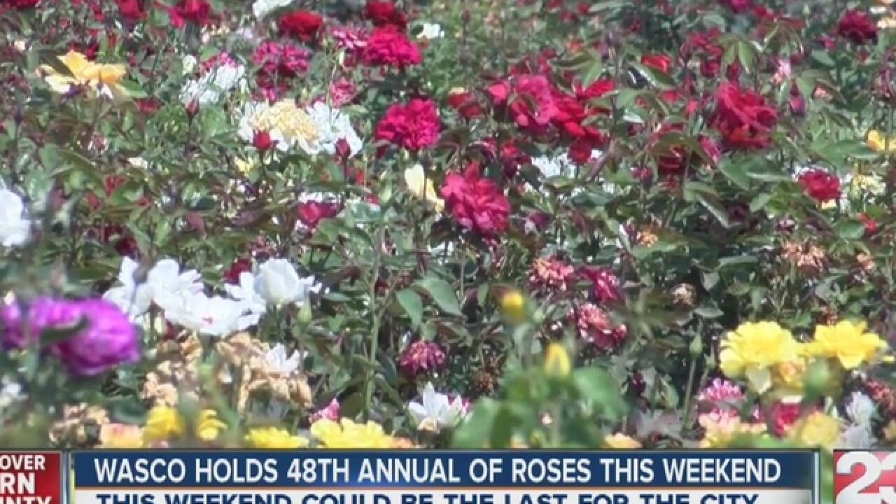 48th Annual Festival Of Roses Could Be Last For Wasco