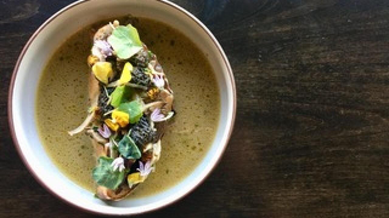 Recipe: Mushroom Fricassee