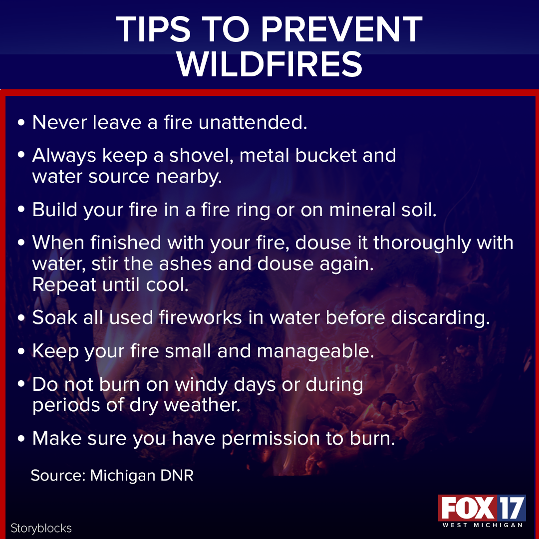Prevent Wildfires web_FACTOID copy (1).png